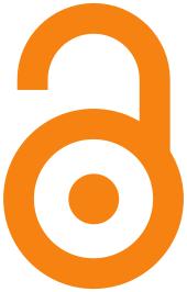 Open access logo: oranges, offenes Vorhängeschloss